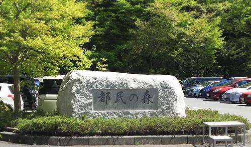 20160505-10都民の森の碑