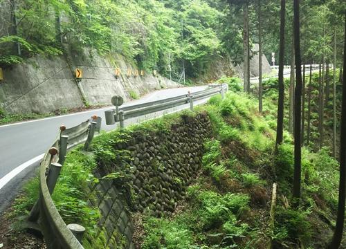 20160528山伏峠-09