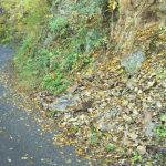入山峠[武蔵五日市]~八王子側と比べると絶景が足りない