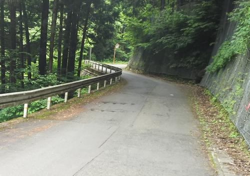 20160619風張林道01