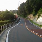 ランド坂(ジャイアンツ坂、よみうりV通り)