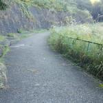 百草団地緑地の坂