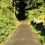 谷津仙元神社の坂