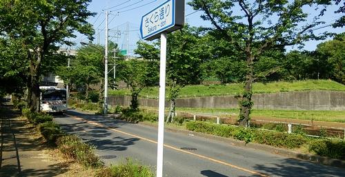 20150506-日大三高裏