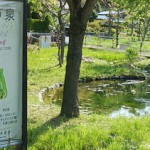 鶴見川源流の坂(源流坂)